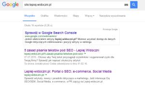 widoczność w Google / filtr w Google