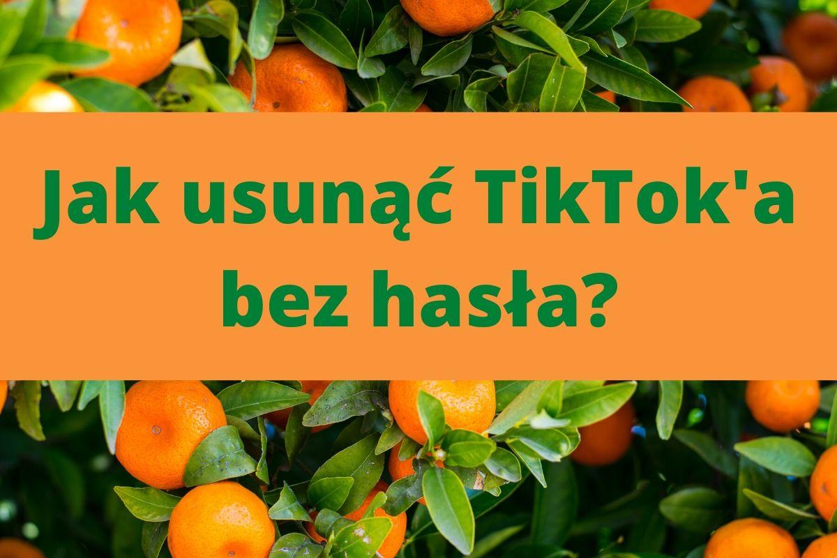 Jak usunąć TikToka bez hasła
